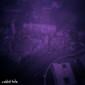 Album Rabbit Hole from The Vitriots