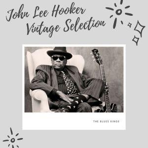 John Lee Hooker的專輯John Lee Hooker Vintage Selection