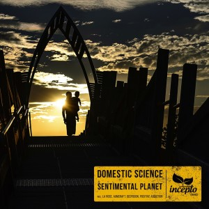 Album Sentimental Planet from Domestic Science