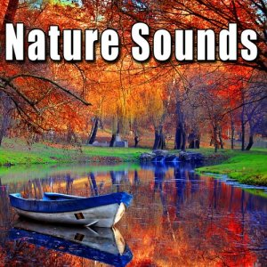 Sound Ideas的專輯Nature Sounds