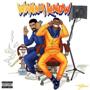 Listen to Wanna Know Remix (feat. Drake) (Explicit) song with lyrics from Dave
