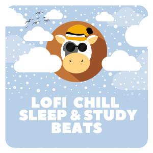 Album Lofi Chill Sleep & Study Beats from Chillhop Cafe