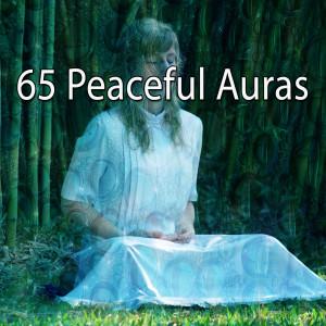 Yoga Tribe的專輯65 Peaceful Auras