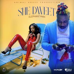 Album She Dweet from Elephant Man