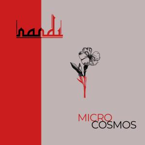 Album Microcosmos from Nandi