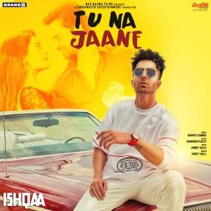 "Album Tu Na Jaane (From ""Ishqaa"") - Single from Harrdy Sandhu"