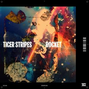 Album Rocket from Tiger Stripes