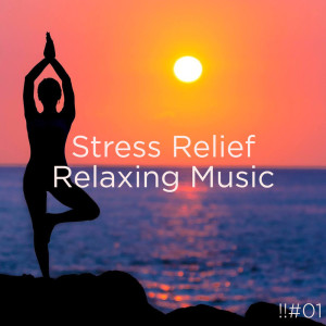 อัลบัม !!#01 Stress Relief Relaxing Music ศิลปิน Nature Sounds Nature Music