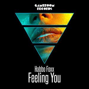 Album Feeling You from Habbo Foxx