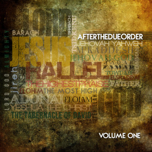 After the Due Order的專輯After the Due Order, Vol. 1