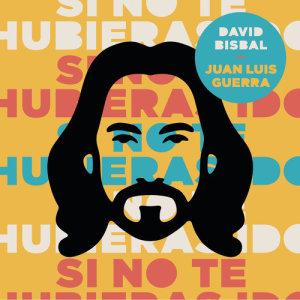 Album Si No Te Hubieras Ido from Juan Luis Guerra