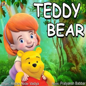 Teddy Bear dari SALONI DESAI