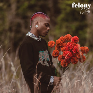 Album Felony from CKAY