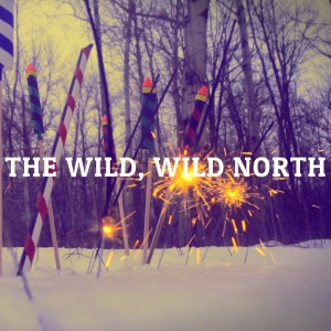 Album Self Titled EP from The Wild