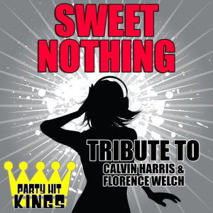 Party Hit Kings的專輯Sweet Nothing (Tribute to Calvin Harris & Florence Welch)