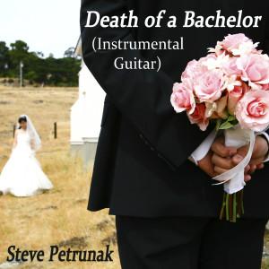 Album Death of a Bachelor (Instrumental Guitar) from Steve Petrunak